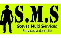Steves multi services 87b descente du cap fouesnant for Entretien jardin fouesnant